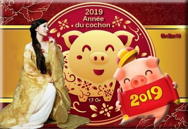 Défi 2019 l'année du cochon