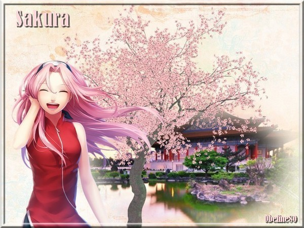 Défi Floraison de Sakura