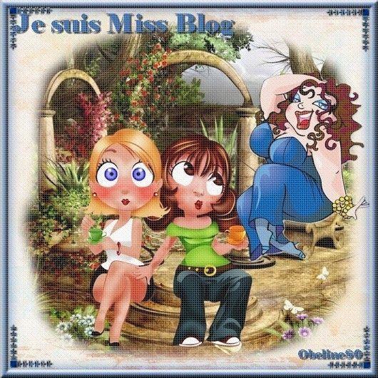 Défi Je suis Miss blog